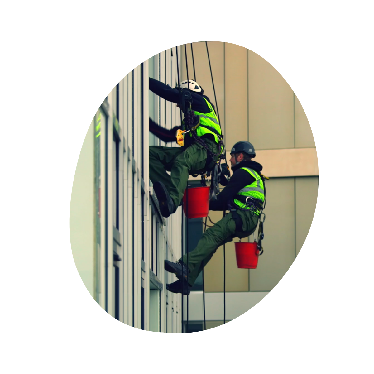 Commercial Window Cleaning - Abseil Window Cleaning